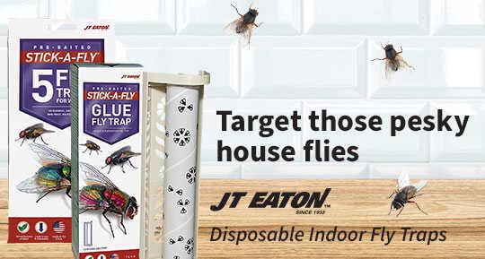 JT Easton Fly Traps