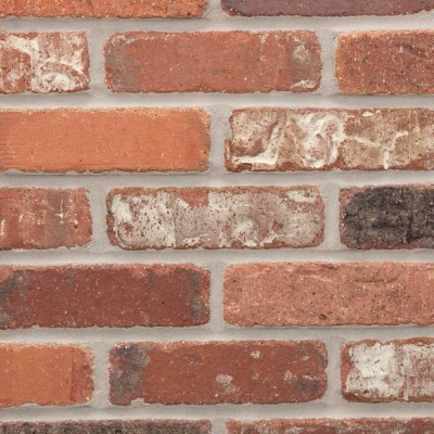 Providence General Shale Alberta 2-1/4 In. x 7-5/8 In. x 1/2 In. Thin Brick Flats Facing Brick